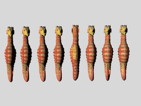 Seahorse row, one backwards