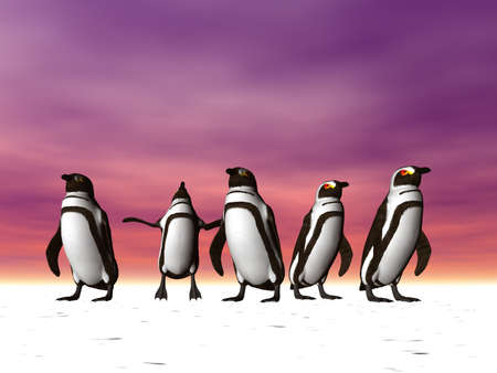 Penguins on the polar ice