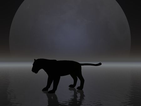Panther silhouetted by the moon