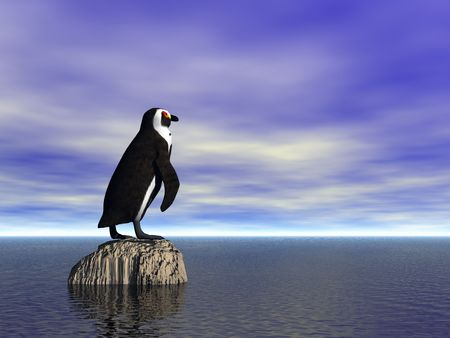Penguin on a rock at sea
