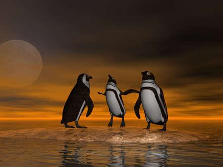 3 Penguins at moonrise