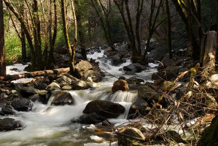 pine creek: Fast moving stream