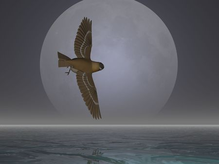 descend: Bird flying in front of the moon