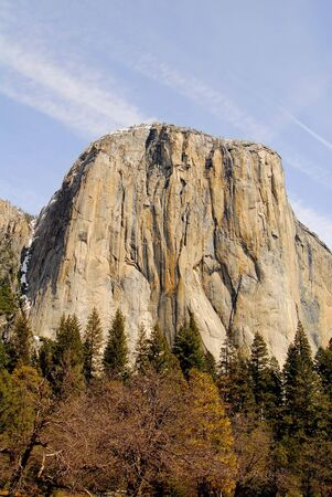 The forest and El Capitan photo