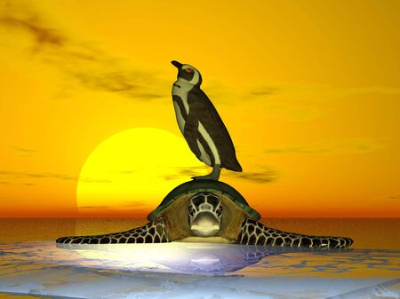 Penguin on top of turtle on ice