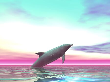 porpoise: Porpoise jumping from the sea