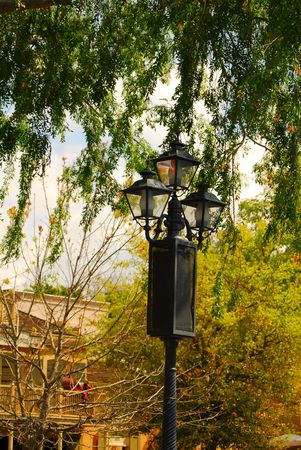 luster: Street light at the edge of the wood