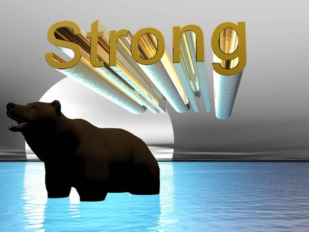 3D bear with illustrated strong