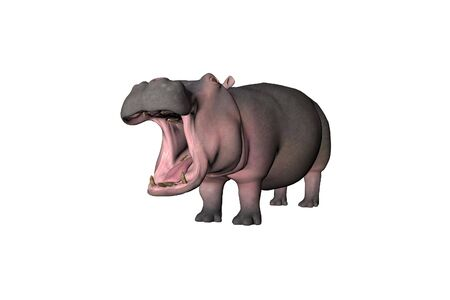 antagonistic: Illustrated 3D Hippo Stock Photo