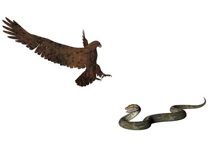 birdlife: Illustrated Eagle attacking a snake Stock Photo