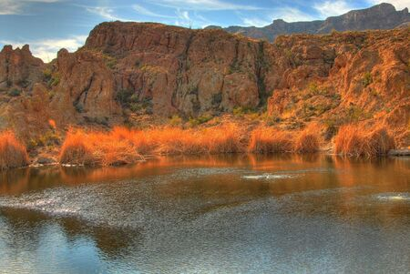 Early morning at a winter desert pond  Stock Photo