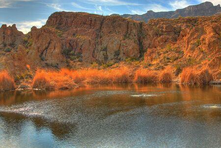 Early morning at a winter desert pond  Stok Fotoğraf