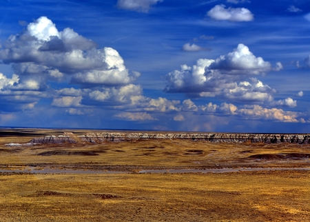 Scenic landscape of the ancient petrified forest photo