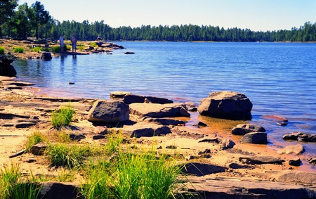 vacationers: Vacationers at a forest lake early in the morning Stock Photo