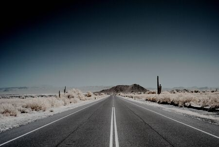 western usa: Moonlight desert road with saguaro cactus in the distance Stock Photo