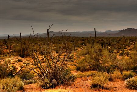 Dramatic desert mountains with a storm approaching photo