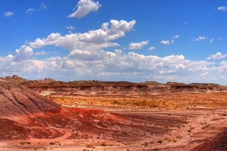 badland: Petrified forest Arizona alien desert landscape national forest