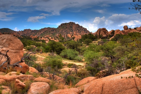 southwest usa: Stormy weather in Texas Canyon in Southeast Arizona