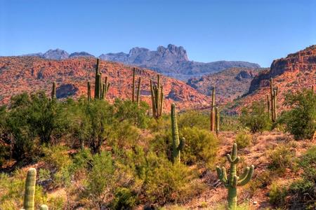Klippen en rotsvormingen in de bergen van Arizona
