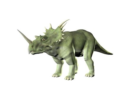 triceratops: Triceratops an ancient jurassic extinct reptile Illustration
