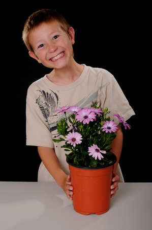 tending: Young boy tending flowers in a pot Stock Photo