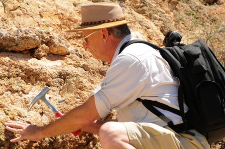 paleontologist: Senior geologist tap a rock formation with a hammer