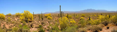Four peaks desert mountains panorama in Arizona photo