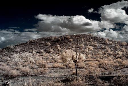 Desert Storm ?ber den S?dwesten der W?ste und die Berge Standard-Bild - 9723946