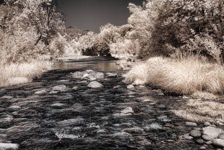 pine creek: Fall at Oak Creek near Sedona Arizona Stock Photo