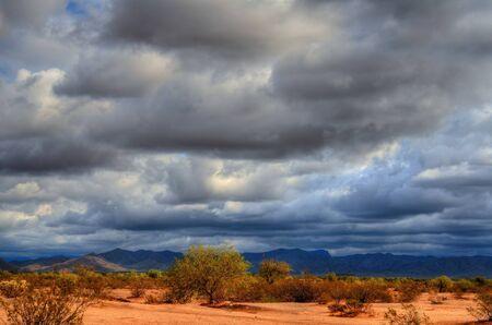 gust: Desert storm over the southwestern desert and mountains