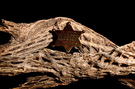 deputy: An old sherrifs badge on dead cholla
