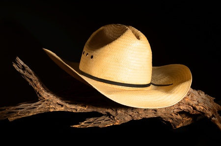 Cowboy hat and cholla skeleton isolated over black