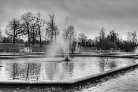 water feature: Monochrome water fountain in a beautiful pond