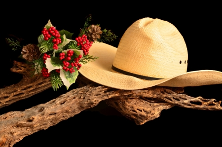 An American style representation of a cowboy Christmas photo