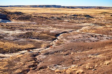 alien landscape: Alien paesaggio foresta pietrificata in stato di Arizona