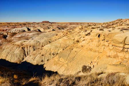 alien landscape: Paesaggio alieno della foresta pietrificata dell'Arizona Archivio Fotografico