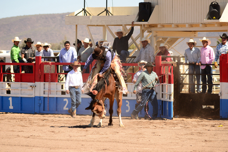 Sacaton, Arizona United States, March 16, 2014: Mul-Chu-Tha Rodeo contestants - Bucking horse Bronc busting, Calf  Roping, and steer wrestling