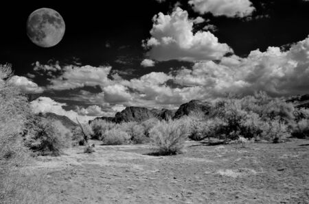 sonora: Full moon in the Arizona Sonora desert Stock Photo