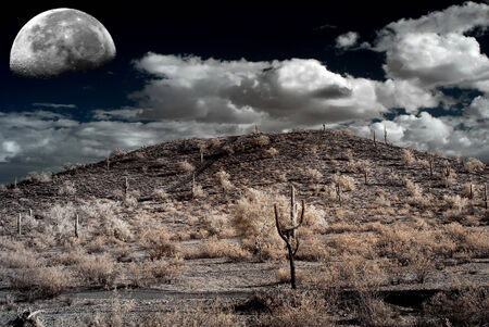 desert storm: Tormenta Luna desierto sobre el desierto del suroeste y las monta�as