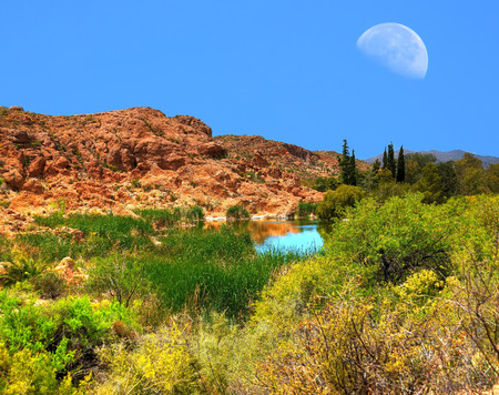 rocky mountain juniper: Moon and desert pond in winter Arizona Stock Photo