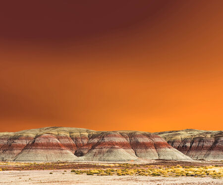 petrified fossil: Sunset scenic landscape of ancient petrified forest