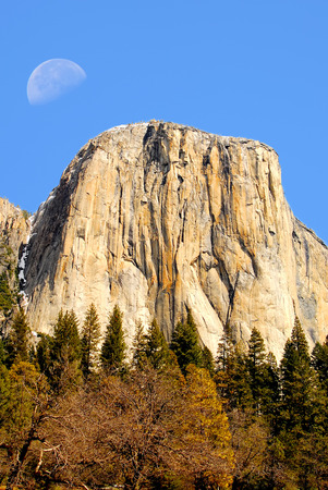 petrified fossil: Moon over El Capitan mountain in Yosemite national park