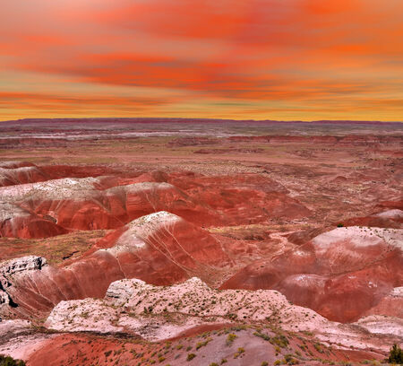 petrified fossil: Sunset scenic landscape of ancient petrified forest in Arizona Stock Photo