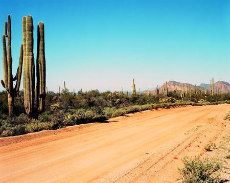 desierto: Camino de tierra que conduce a las monta�as del desierto Foto de archivo