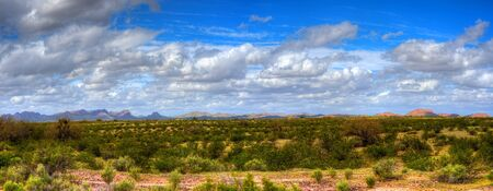 sonora: Panorama Sonora desert in central Arizona USA Stock Photo