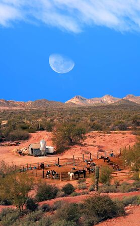 sonora: Horses in corral with moon rising in Sonora desert Stock Photo