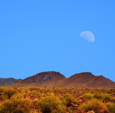 sonora: Moon rising Sonora desert in central Arizona USA