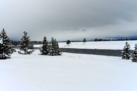 douglas: Madison River and Douglas Fir covered with snow in Yellowstone National Park Stock Photo