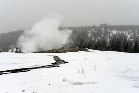 faithful: Old Faithful Geyser erupting in winter snow