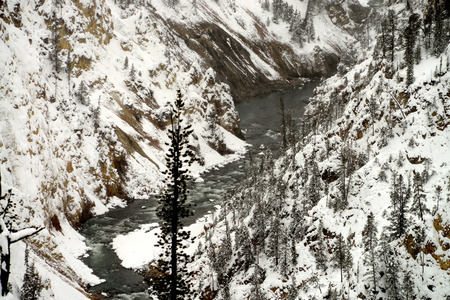 madison: Snowy Morning on the Madison River in Yellowstone National park Stock Photo
